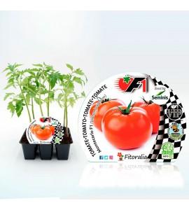 Pack Tomate Montecarlo F1 6 Ud. Solanum lycopersicum - 02038003 (1)
