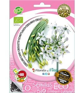 Sobre Semilla ECO Cebollino Chino Garlic Chives - 04082094 (1)