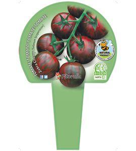 Cartel Piruleta Tomate Cherry - 23550013 (1)