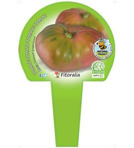 Cartel Piruleta Tomate Rosa - 23550015 (1)