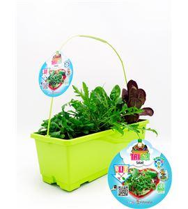 TriOh! Salad - 02045014 (0)
